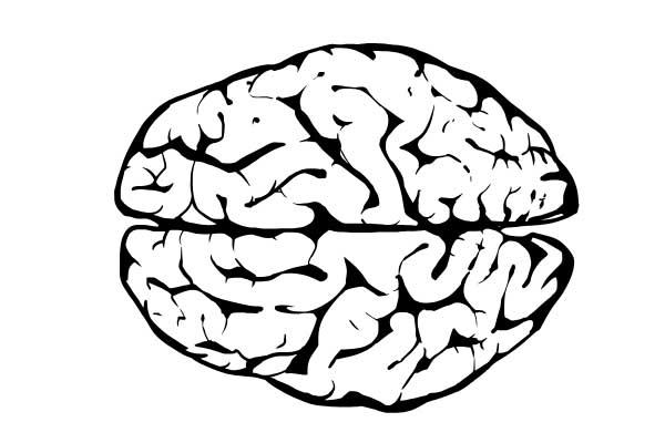 Neurodiversity Worskshop