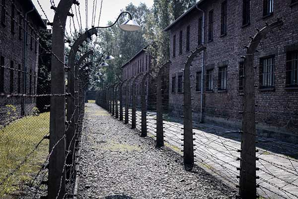 WWII and the Holocaust Film and Lecture Series