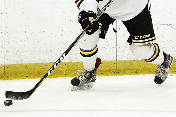 Men's Hockey vs. Stevenson