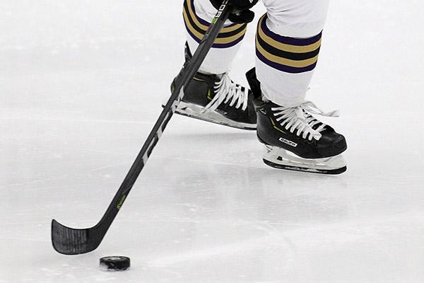 Women's Hockey vs Stevenson